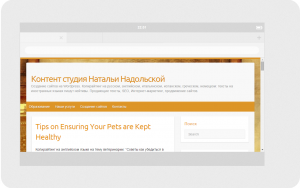 Как выглядит сайт в Kindle-1024x600