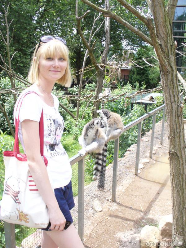 Проведите свидание в Пражском зоопарке