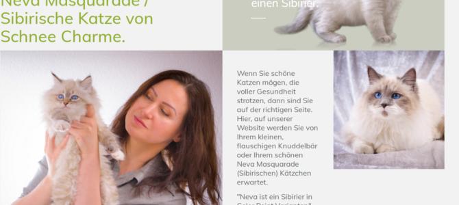 Копирайтинг на немецком для питомника кошек Von Schnee Charme